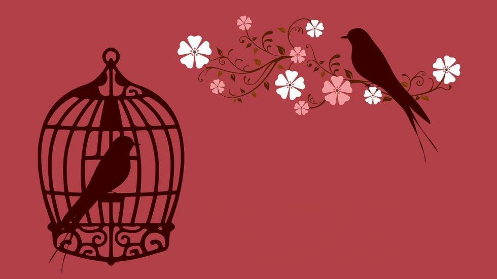 Oživite vezu s partnerom uz pomoć romantičnih savjeta
