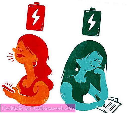 Priča o temperamentima