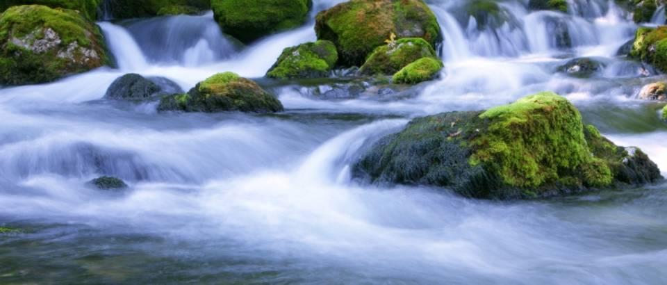 Kroz život treba teći poput vode!