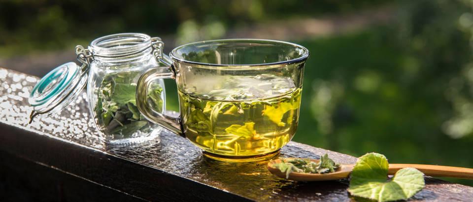 Sve o moćnim biljkama koje olakšavaju simptome prehlade, gripe, grlobolje i kašlja