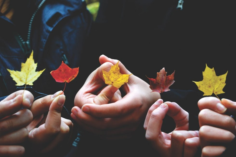 Zlatna zora u 23h: Što vam donosi jesen? + KLJUČ vašeg jesenskog uspjeha + Anđeoske poruke