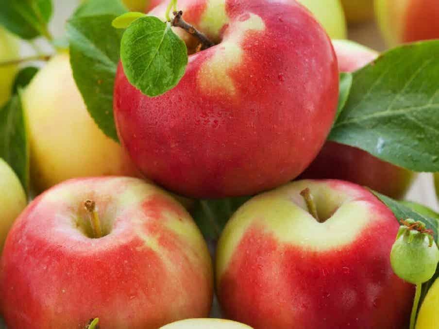 Jabuka razdora