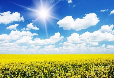Zlatna pravila za svakodnevni život - Nebo nam je dalo bogatstva