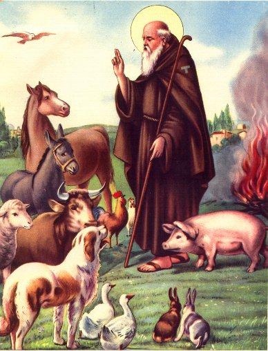 Svetac dana – Sveti Antun opat