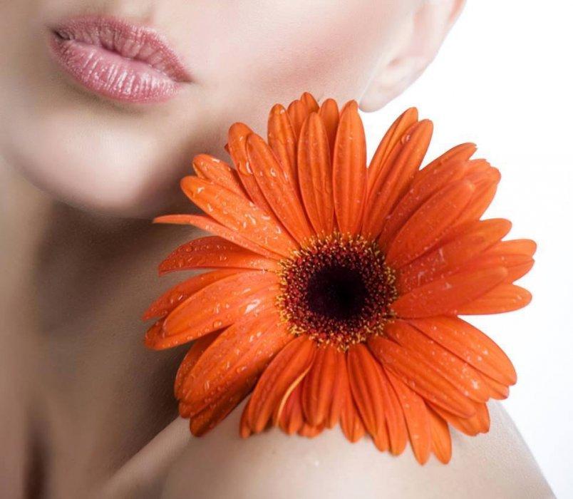USTA - Uzrok Bolesti Usta