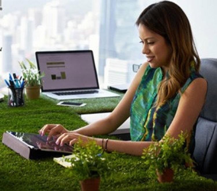 4 biljke koje izvrsno čiste zrak u vašem domu i uredu