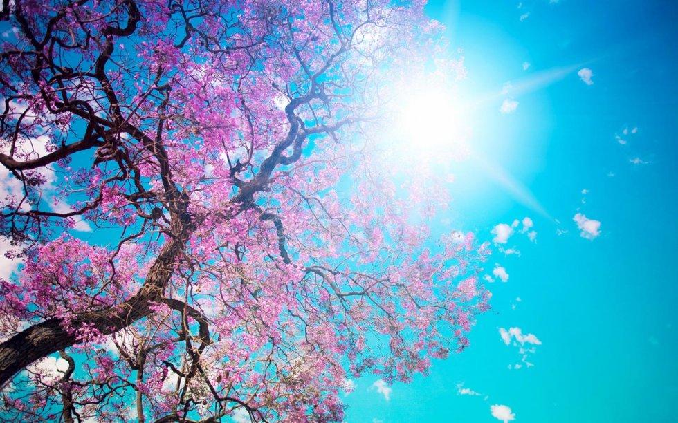 Dobro nam došlo proljeće!