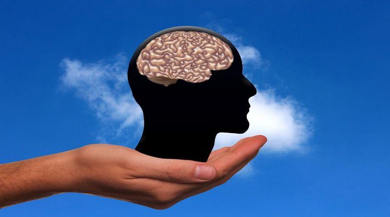 Naš život oblikuje naš um