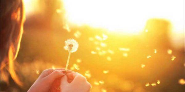 MOĆ SADAŠNJEG TRENUTKA - Ljubav,radost i spokojstvo
