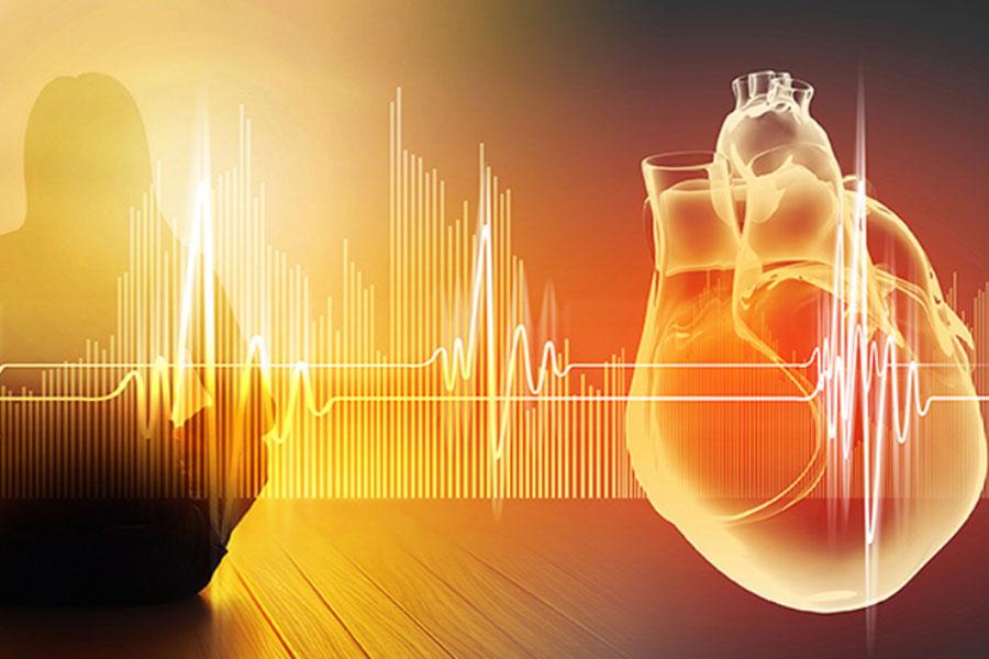 Mozak u srcu