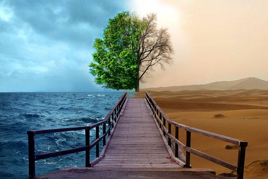Ljubav prema prirodi