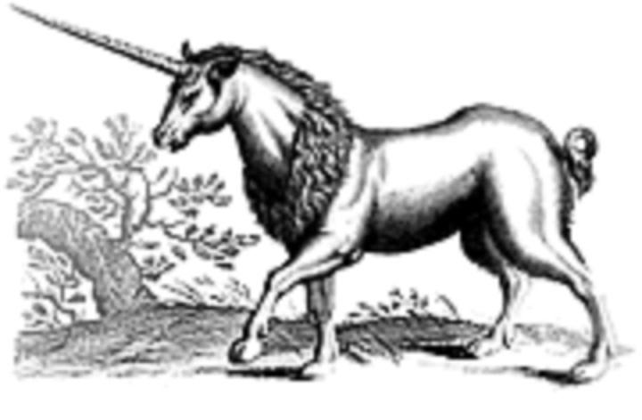 Jednorog - Behemot (znanost i Biblija)