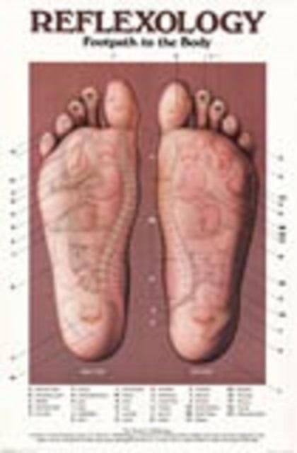Meridijan perikardija i krvotoka  i refleksologija