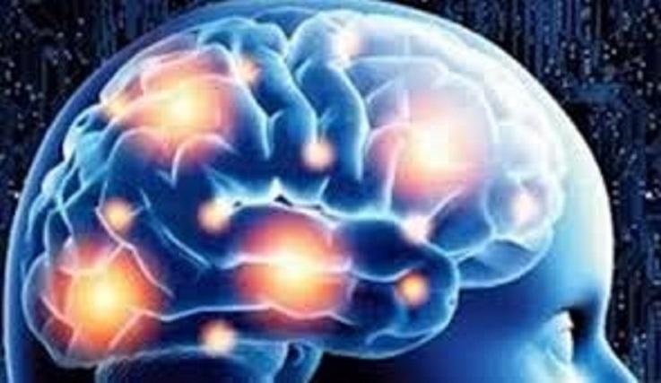Šta se događa sa vašim mozgom ako svaki dan kukate?