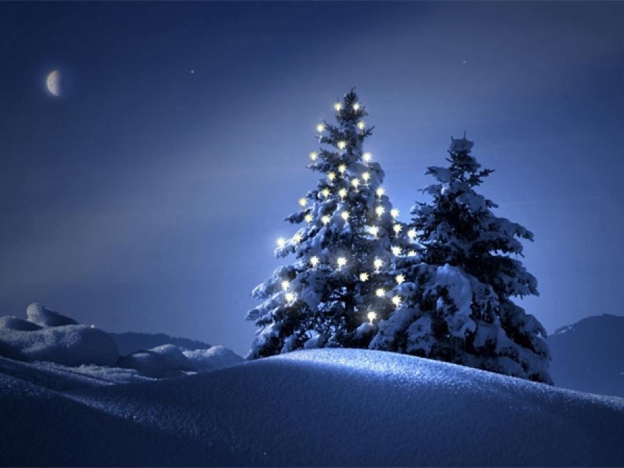Priča o božićnom drvcu