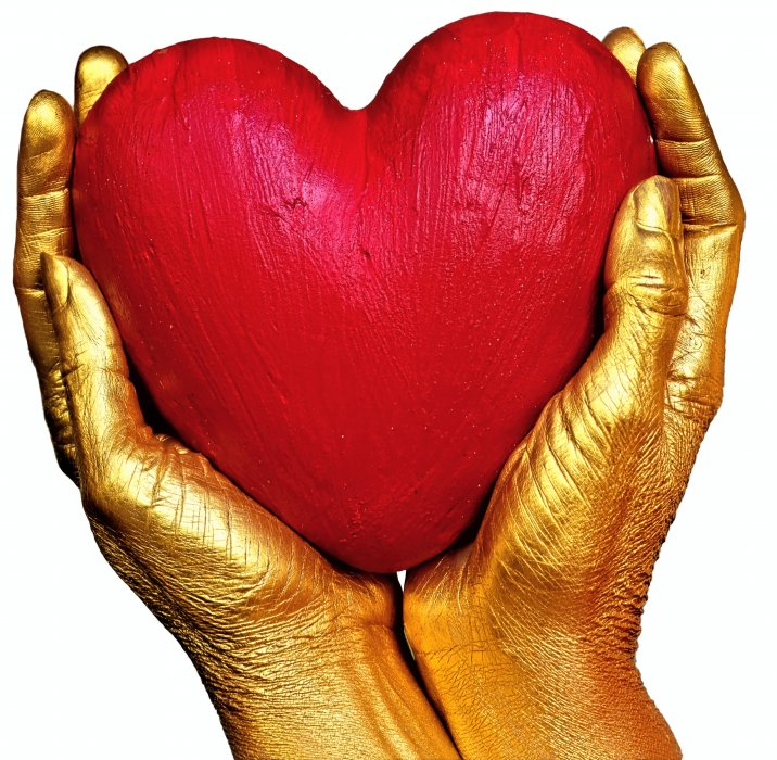 Srce nema distancu