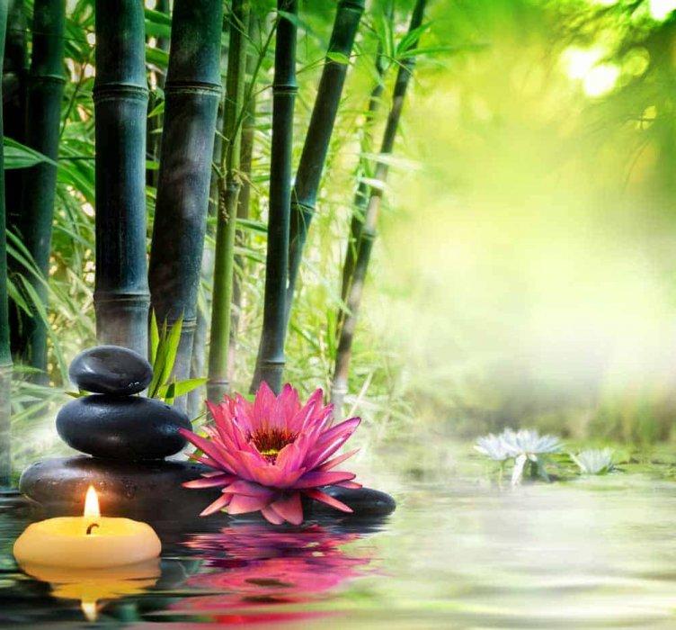 Meditacija o Zahvalnosti