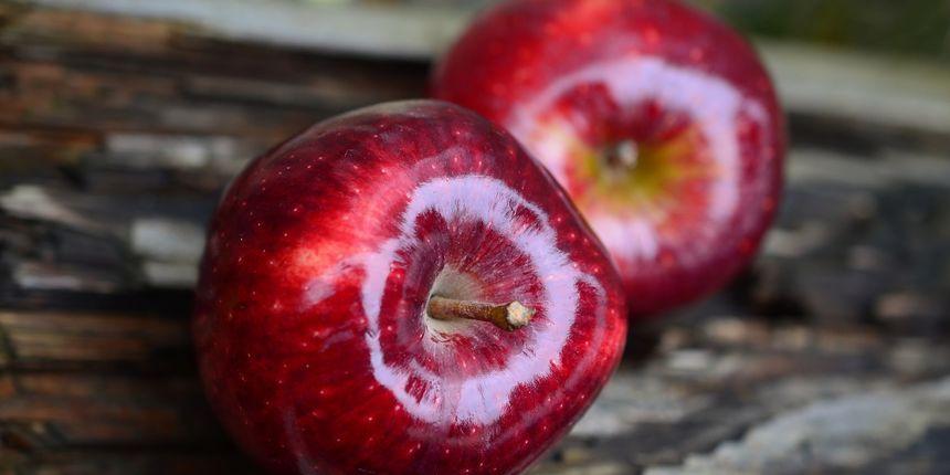 ljudi nisu jabuke