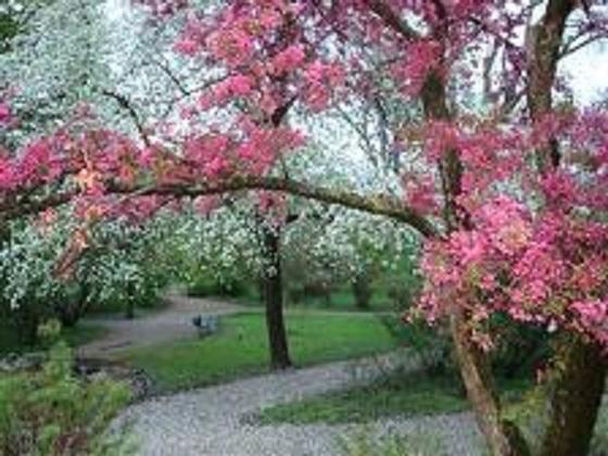 Zagreb u proljeće