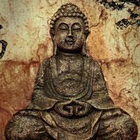 ...Ljubav prema budizmu.