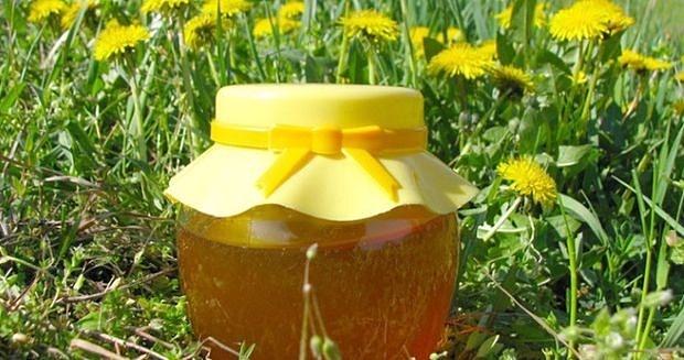 Med od maslačka bez šećera | ekuhinjica