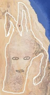 Meduzina glava