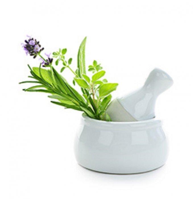 Antioksidansi u začinskim biljkama