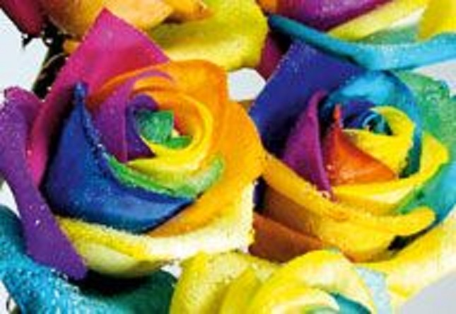 Neprivlačne ruže ili poklon budućnosti?