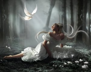 devojka i golub