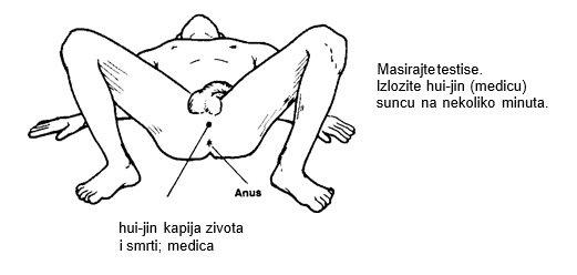 Staviti penis u vaginu kako Može li