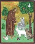 sv Franjo Asiški
