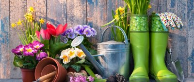 5 razloga zašto je vrtlarenje dobro za vaše zdravlje