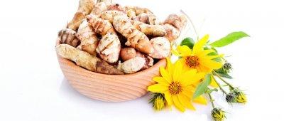 Čičoka - ukusni gomolji snizuju šećer u krvi, ublažavaju upale i jačaju potenciju