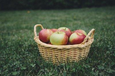 Anthony William o hrani koja mijenja živote: Nikad ne podcjenjujte snagu jabuke