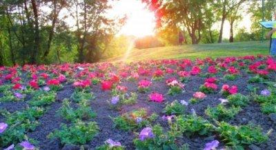 Želim ti prekrasan dan!