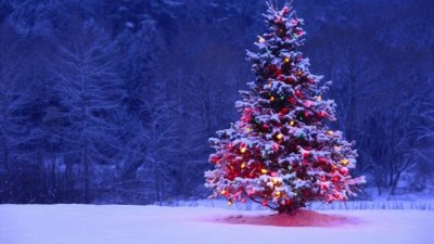 12 svetih noći: Sanjanje godine koja dolazi