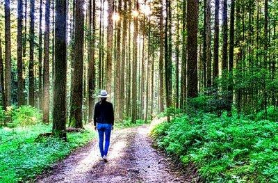 RECEPT KOJI SI MOŽETE PRIUŠTITI: 30-minutna šetnja svaki dan može smanjiti vaš krvni tlak jednako kao i tableta