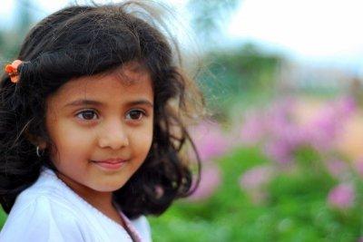 Piplantri, indijsko selo u kojem se posadi 111 stabala svaki put kad se rodi djevojčica