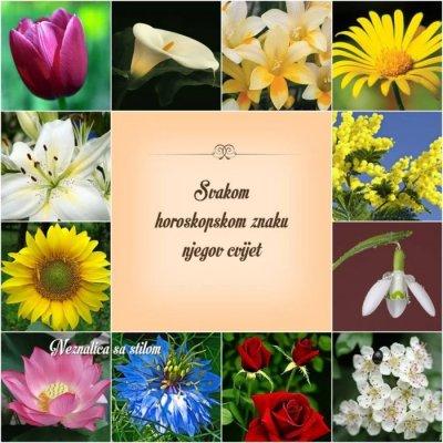 Natalni horoskop i omiljen buket - cvjetni horoskop