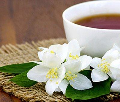 Čaj od jasmina – dobrobiti, primjena i uzgoj