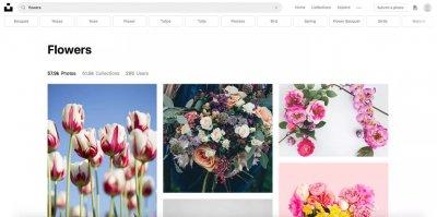 10 najboljih stranica za besplatne slike
