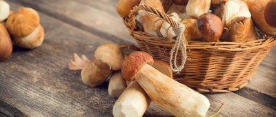 Prijedlozi za jesenji meni - Krumpir gulaš sa vrganjma