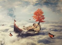U snu sortiramo emocije